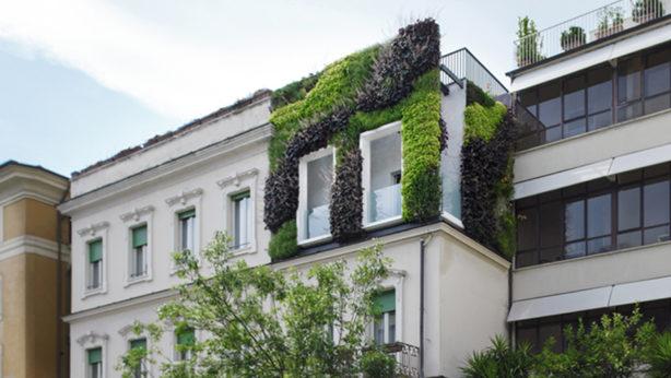 Il primo giardino verticale a Roma: Sistema Ufficio c'è