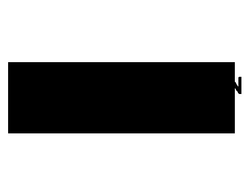 logo sistema green black